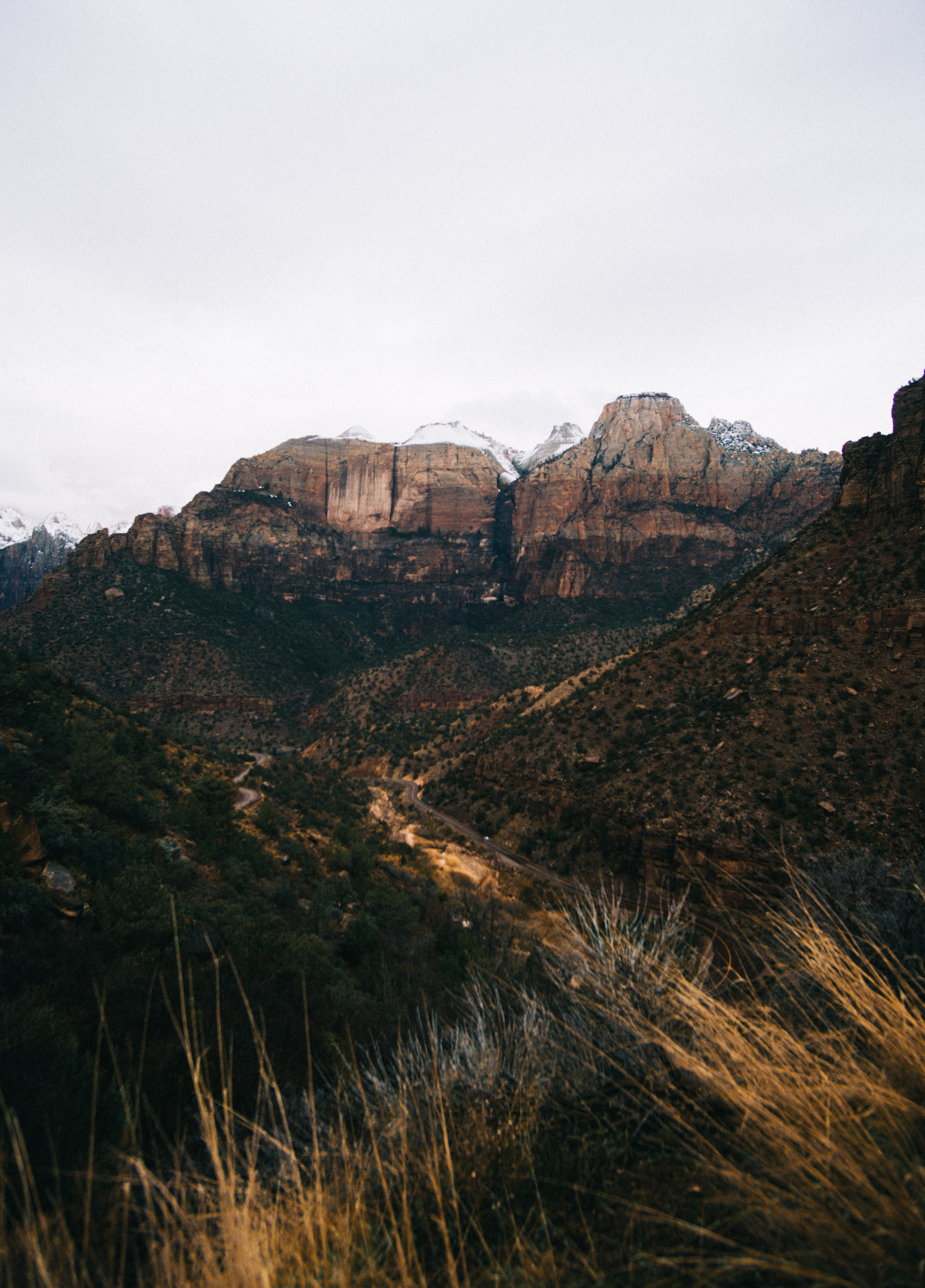 View from a mountain valley on a steep red rock face in Zion National Park