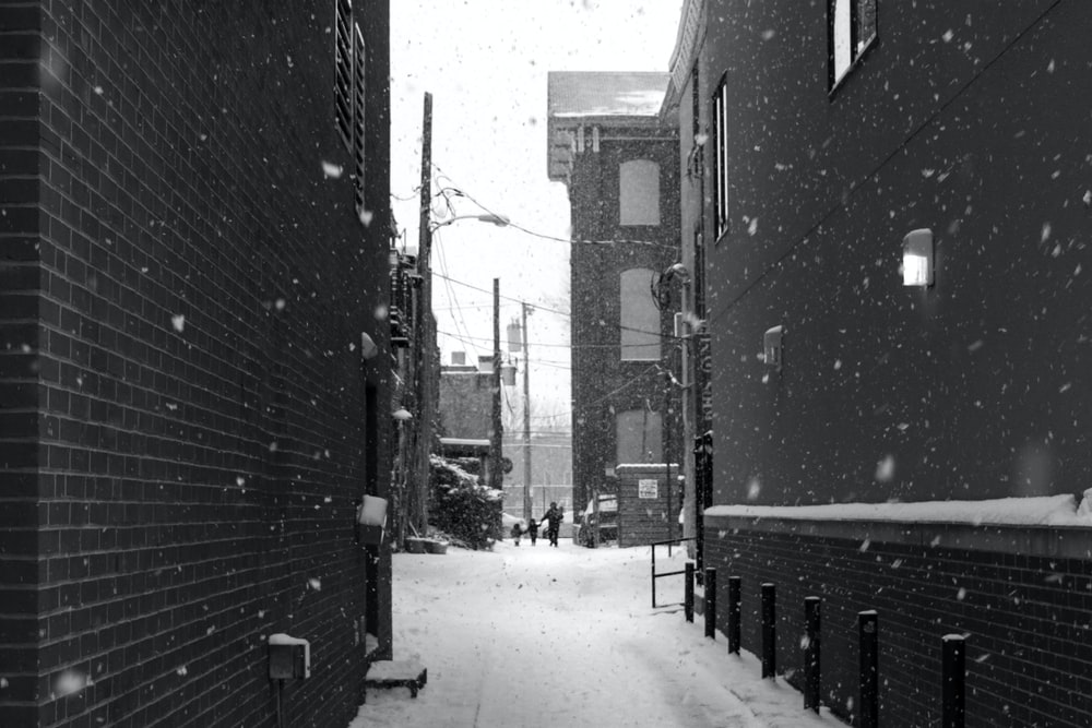 alley surrounded by snow