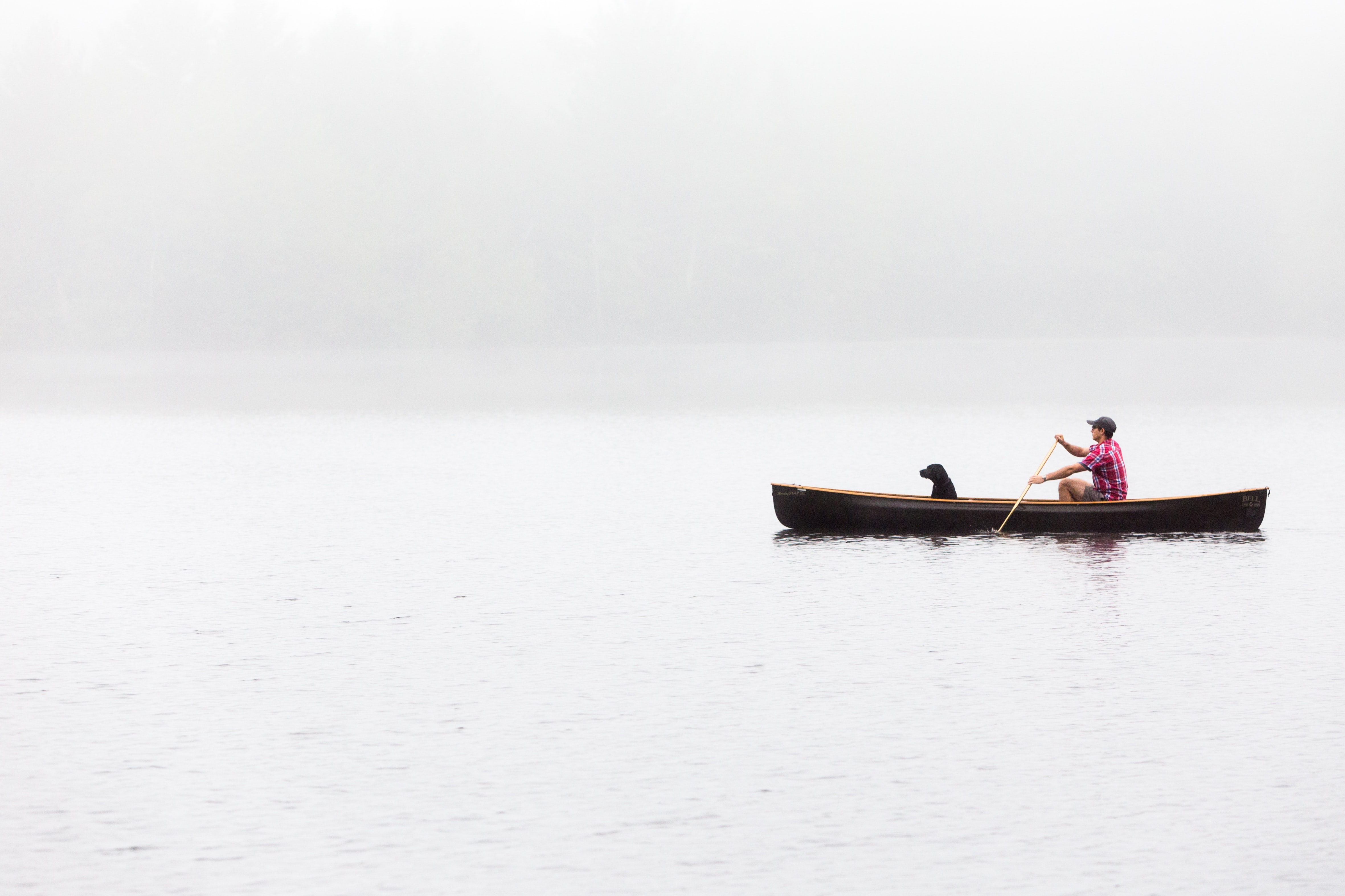 Man and dog on a foggy morning canoe ride through a calm lake