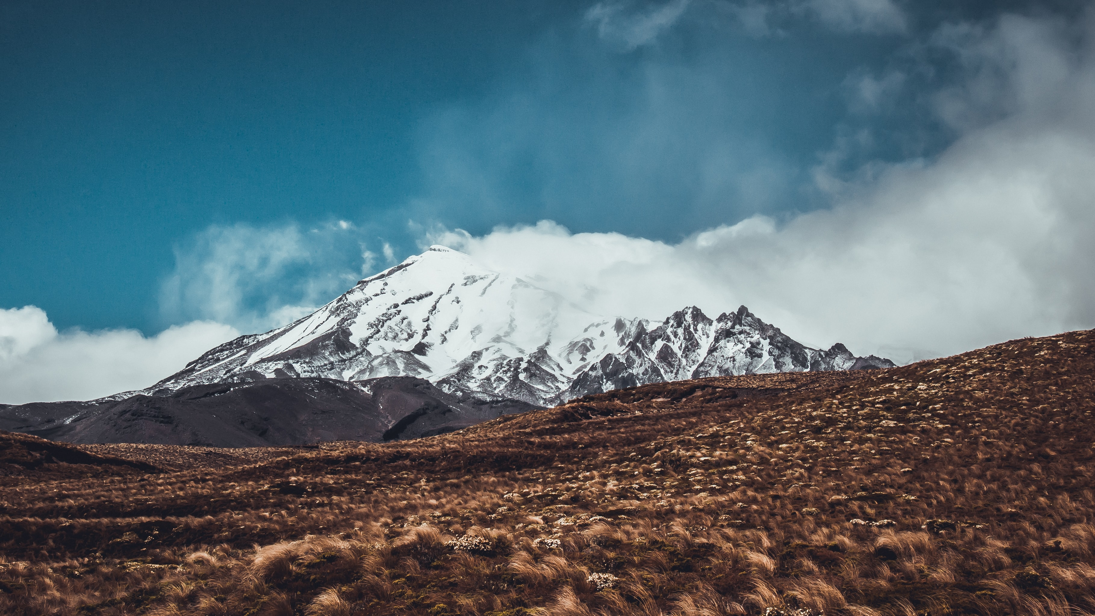 A grassy field near a snow-covered mountain in Tongariro National Park