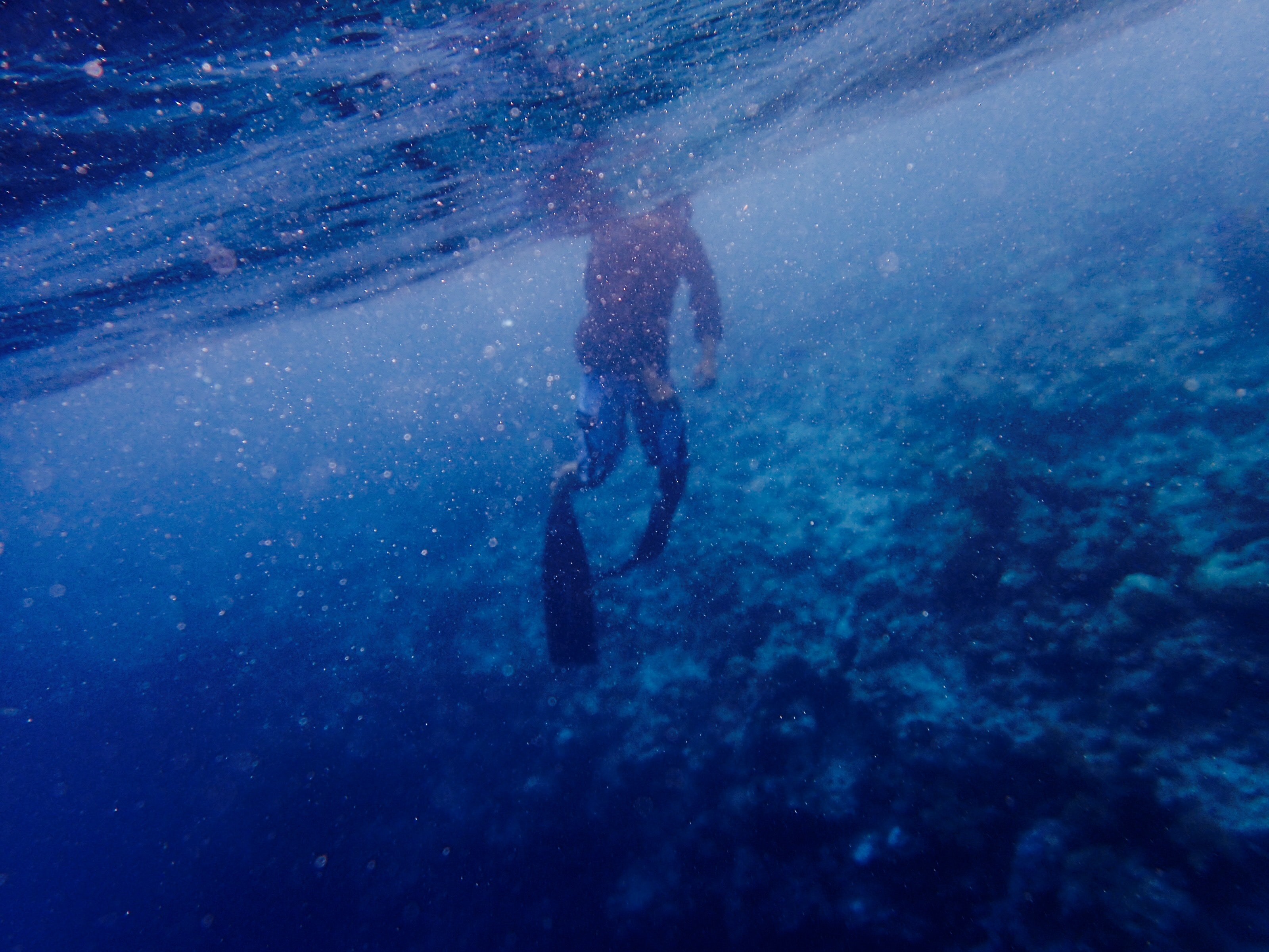 A diver underwater in the deep blue ocean.