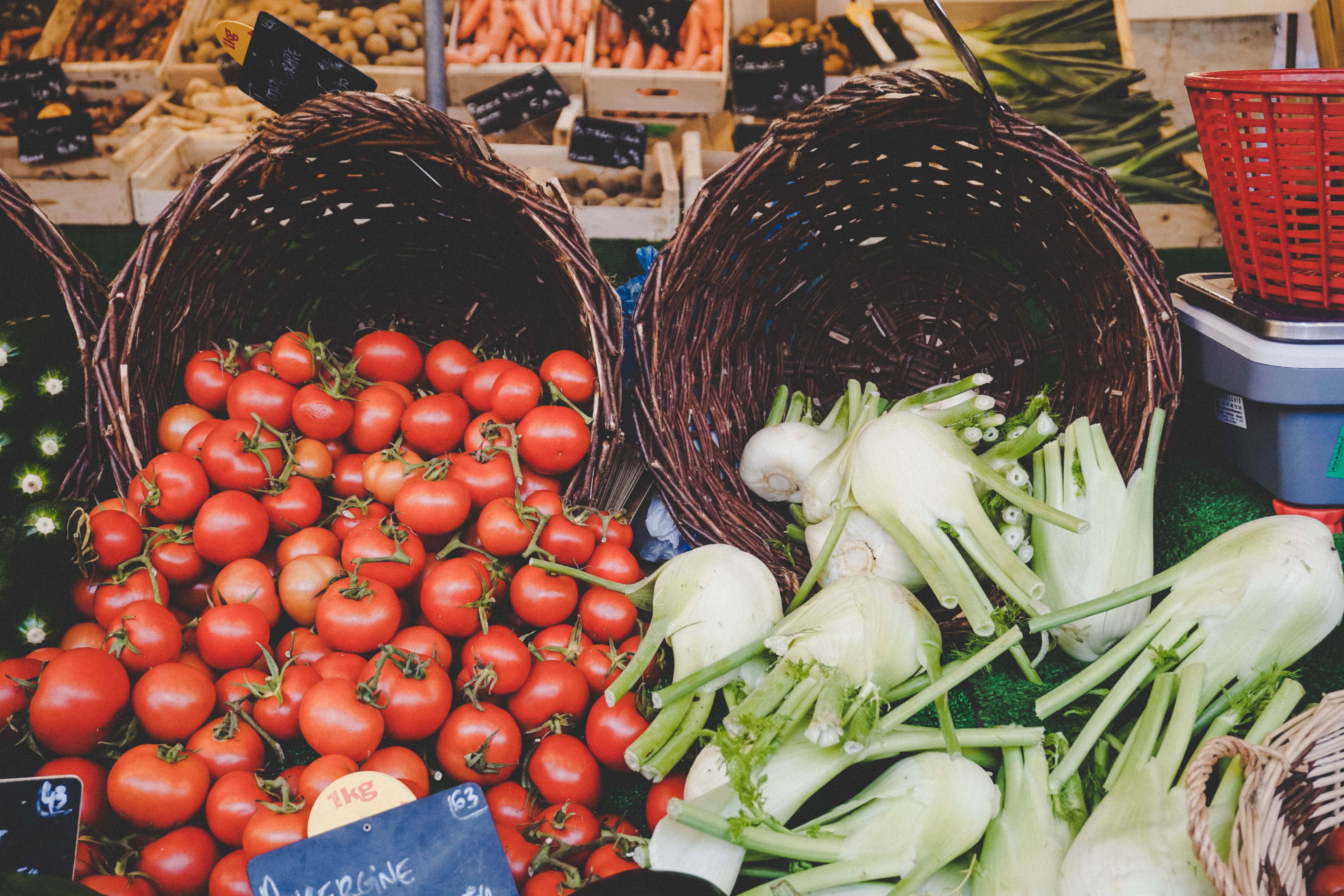 Two baskets with tomatoes and fennels overflowing with other vegetables in the background
