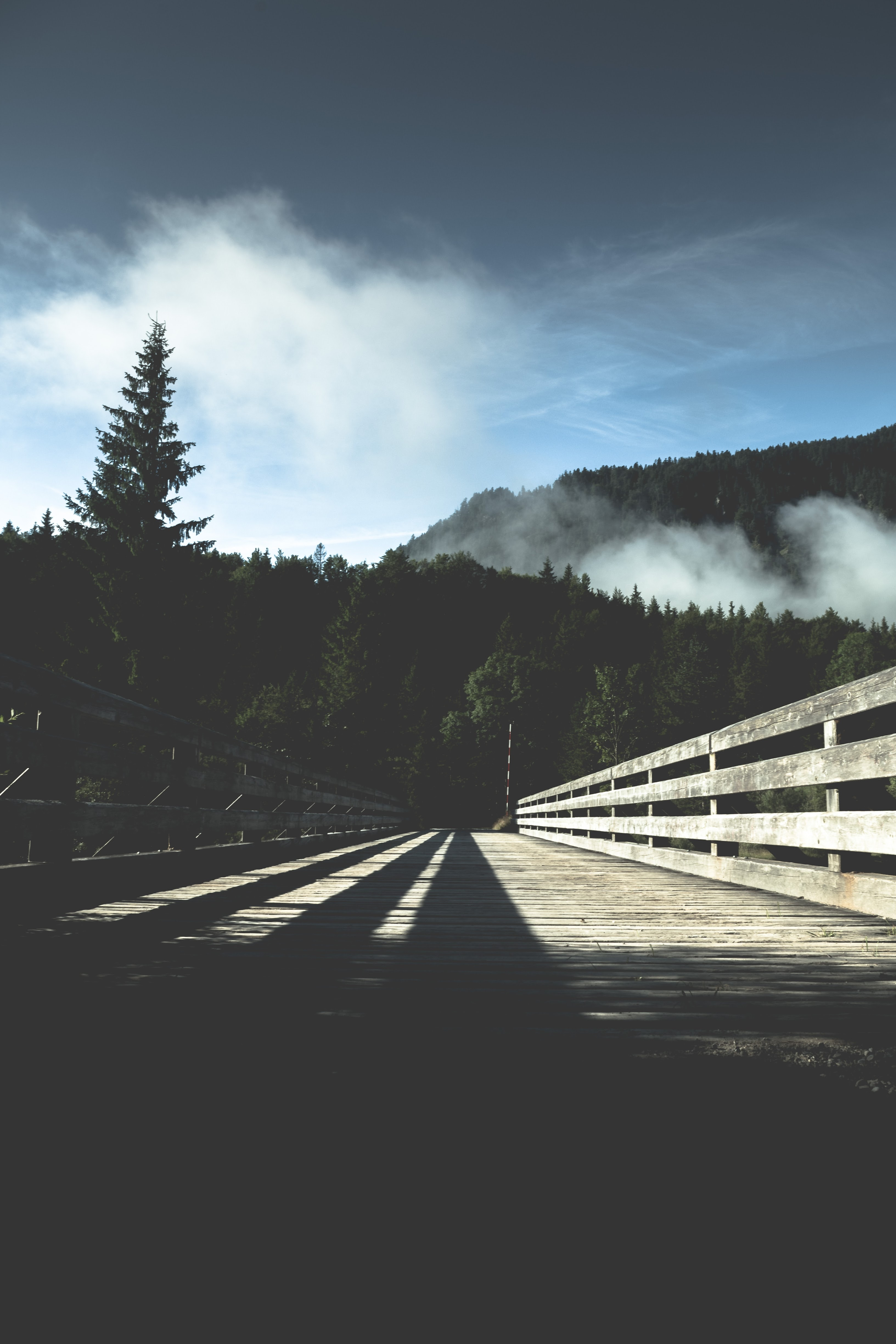 A low shot of a wide wooden bridge leading into a forest in Vorderriss
