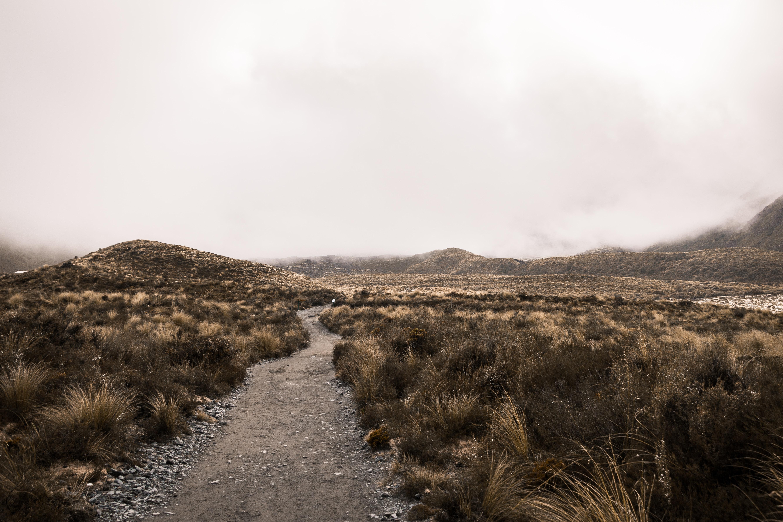 Path through the desert of Tongariro Alpine Crossing