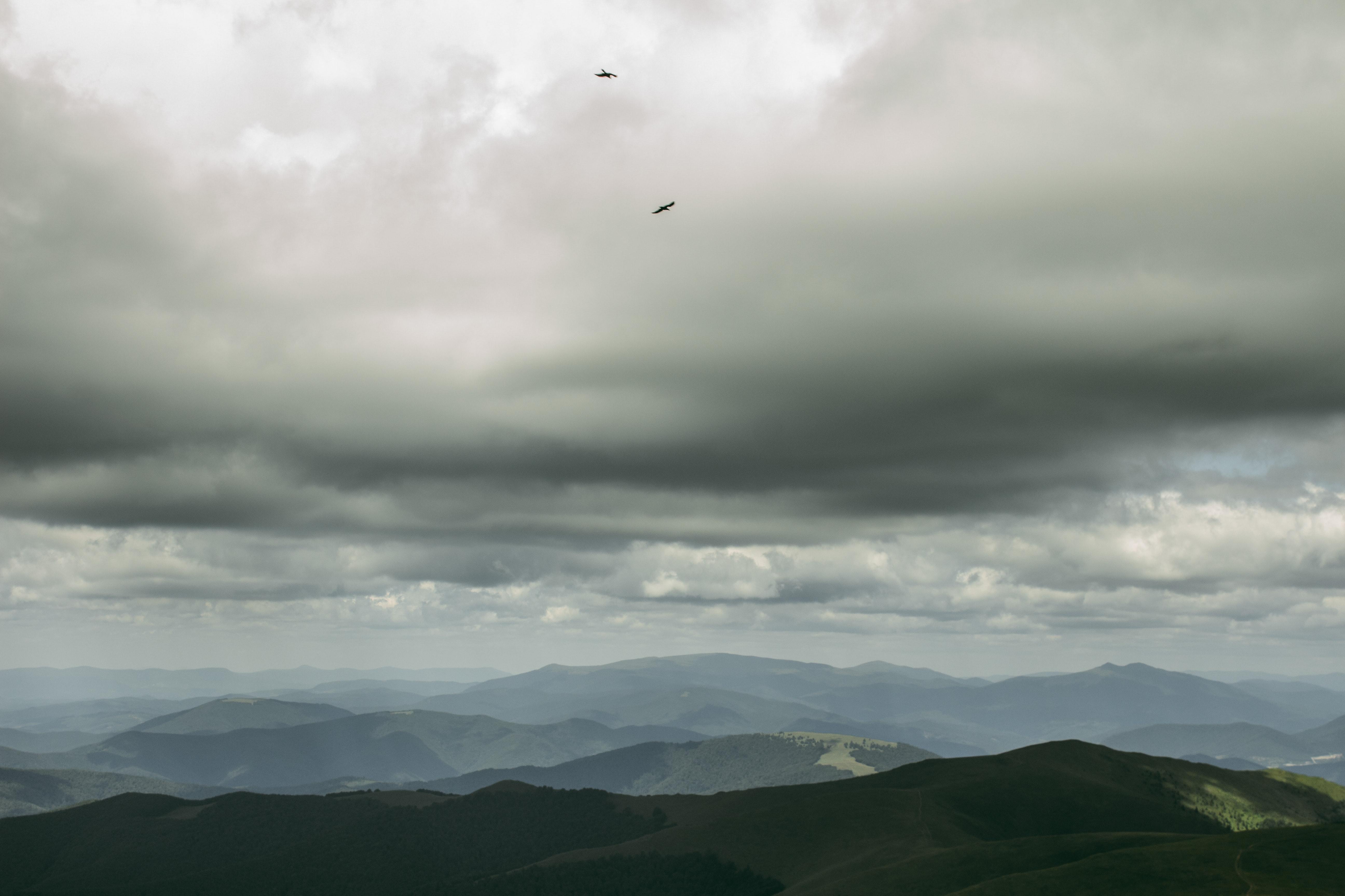 Panoramic shot of the Carpathian Mountains with gray cloudy skies overhead.
