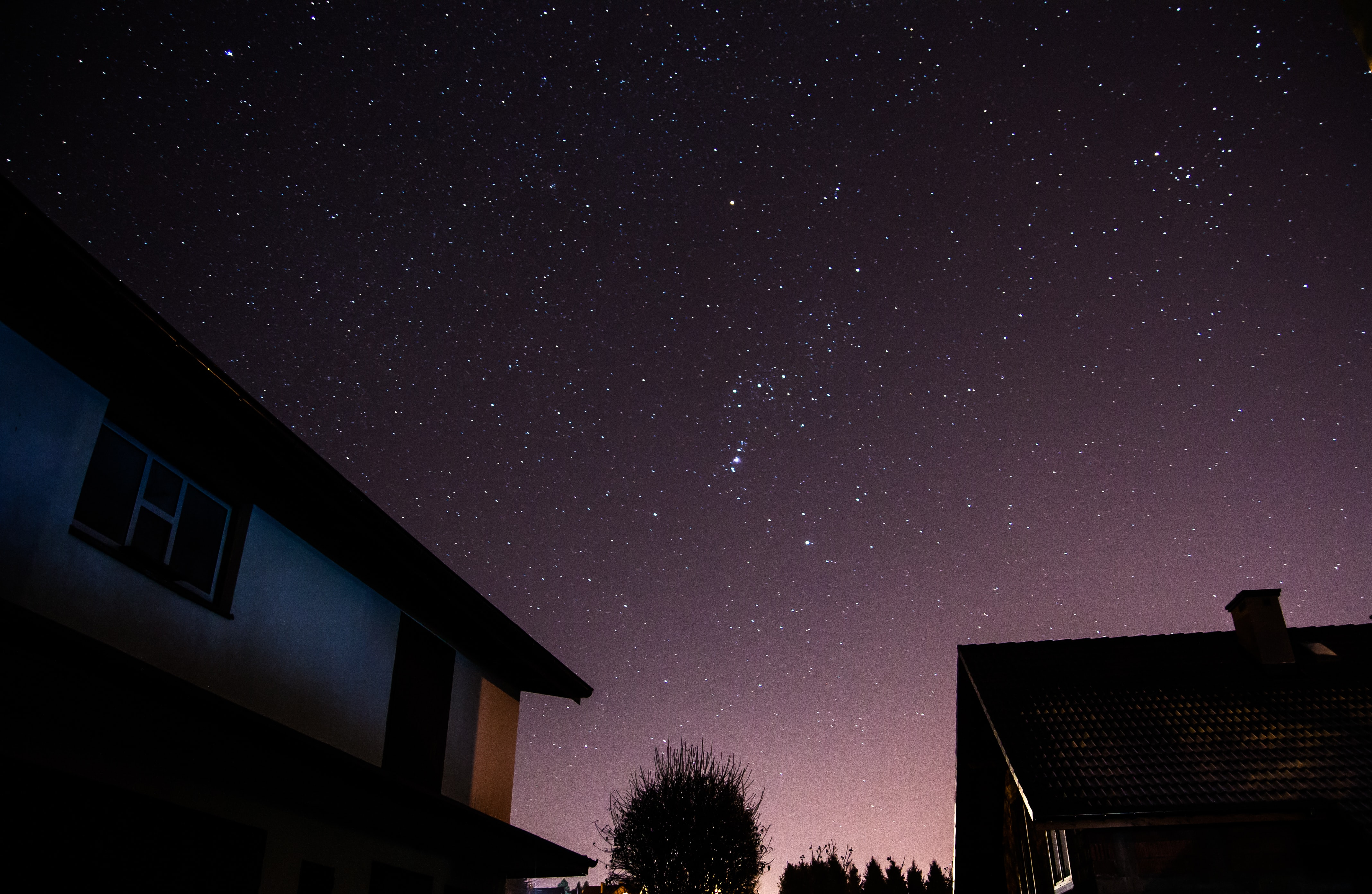 Houses and trees silhouetted against a purple starry night sky