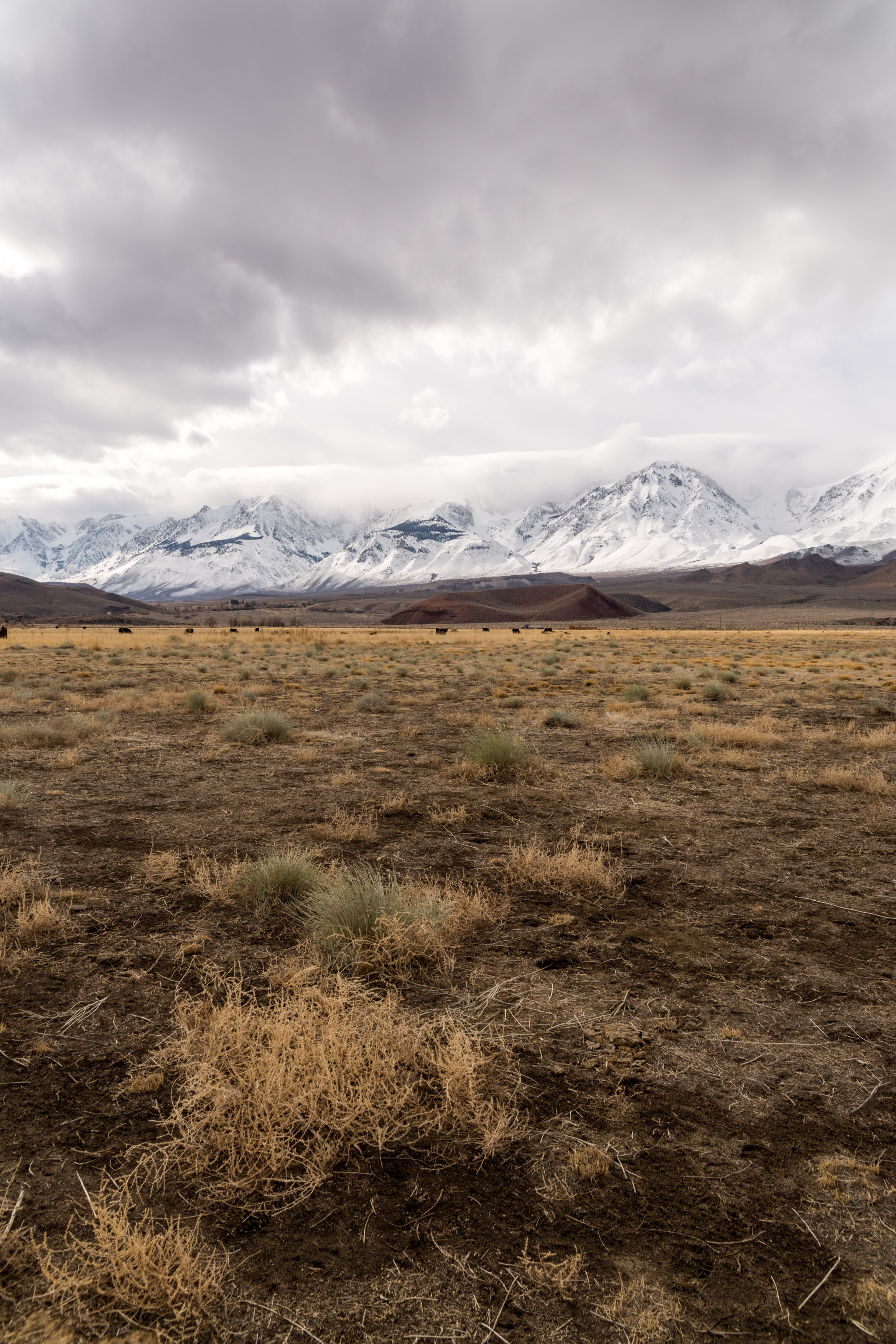 A vast dry plain stretching to the snow-covered mountains on the horizon