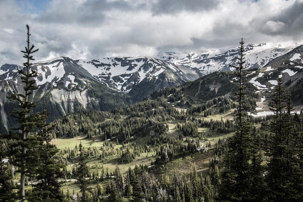 birdseye photo of mountain