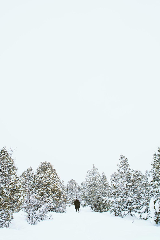 person wearing black jacket standing beside tree during winter season