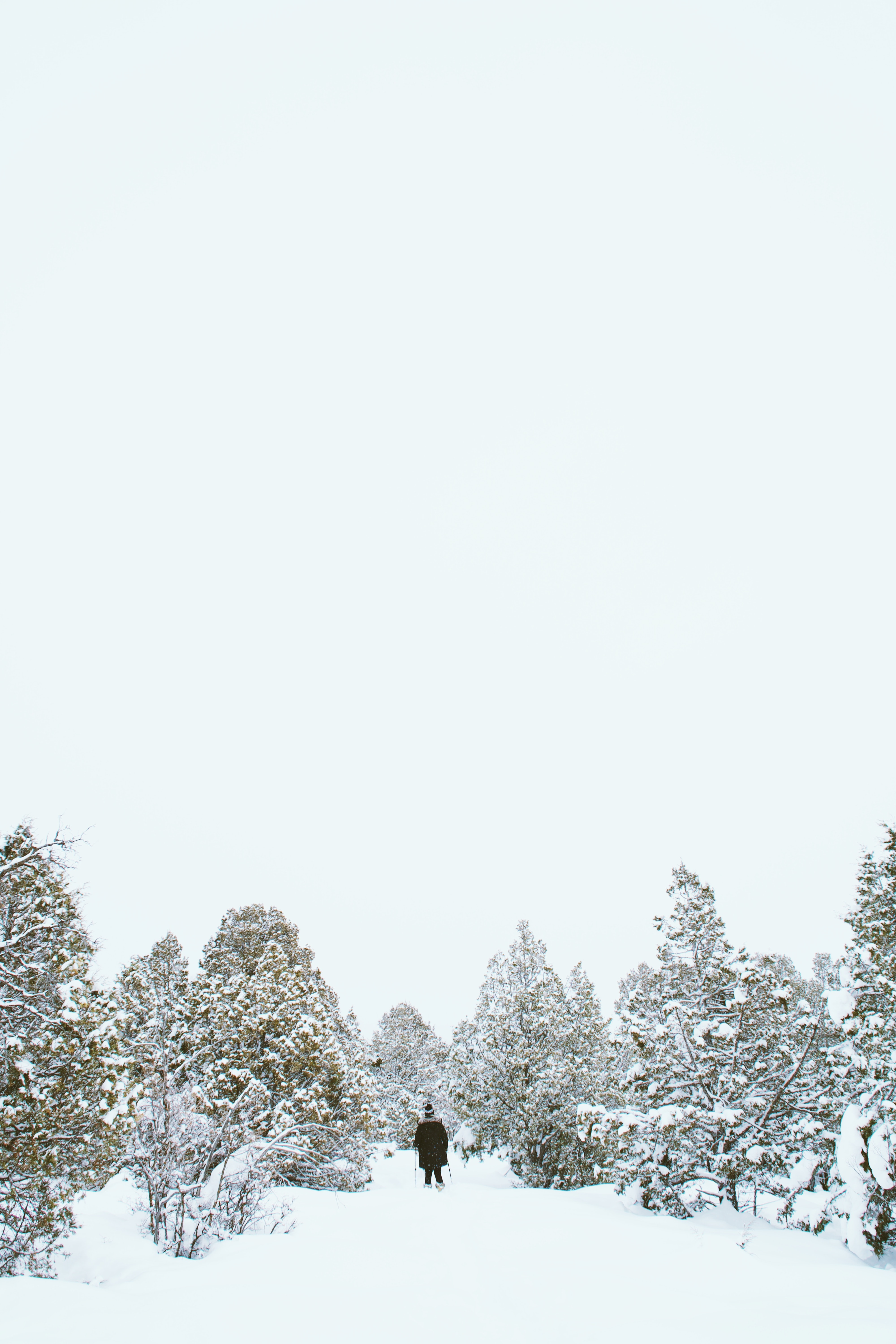 A person walking on snow among small trees in Summit County