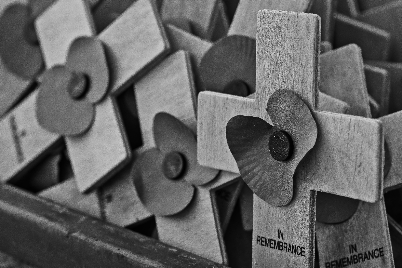 gray wooden cross lot