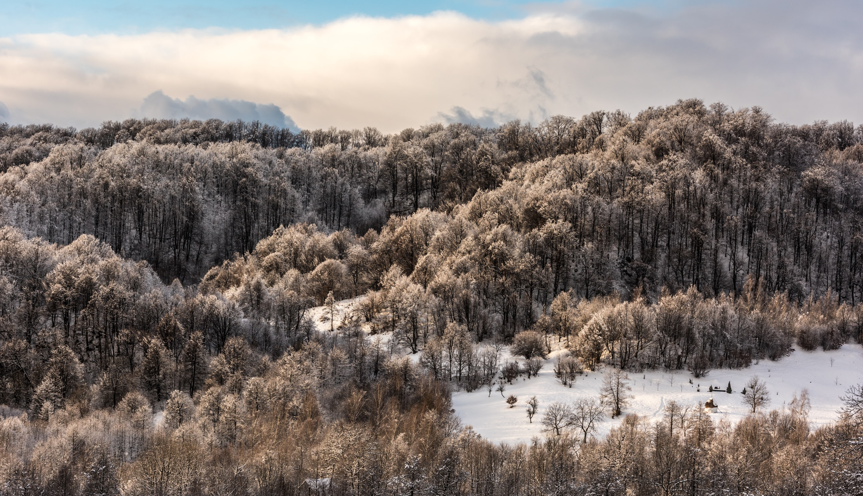 A landscape photo showing off the magnitude of the snow covered forest in Maramures County