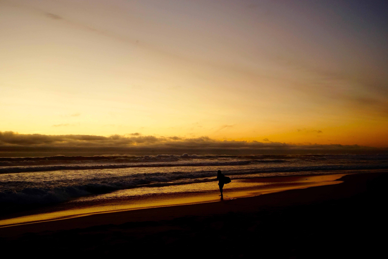 Surfer holding board walking along Gunnamatta Ocean Beach during sunset