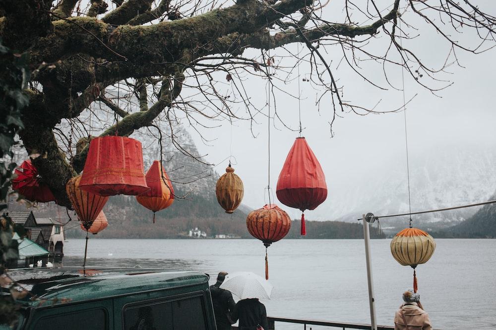 several paper lanterns on brown tree