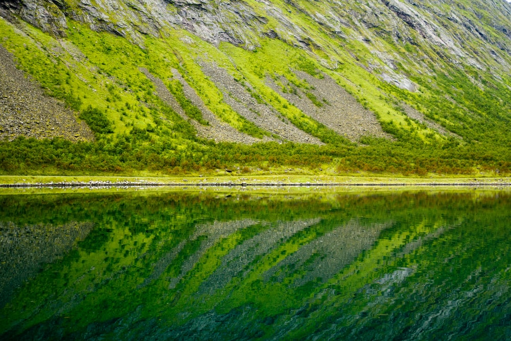 reflection of sloping land on still water