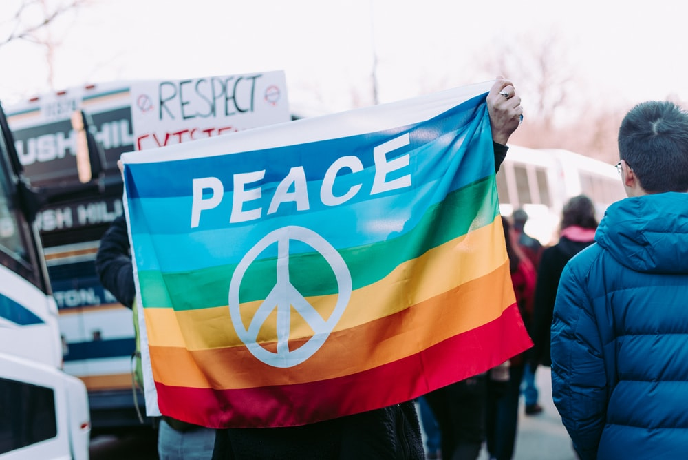 person holding peace flag
