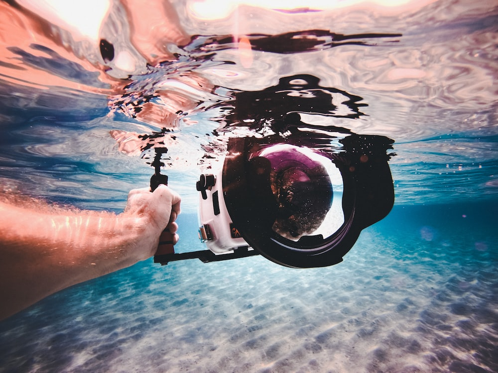 person holding white and black underwater camera
