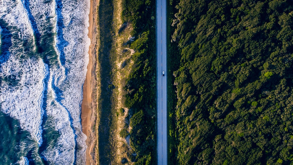 aerial photography of concrete road between trees and seawave at daytime