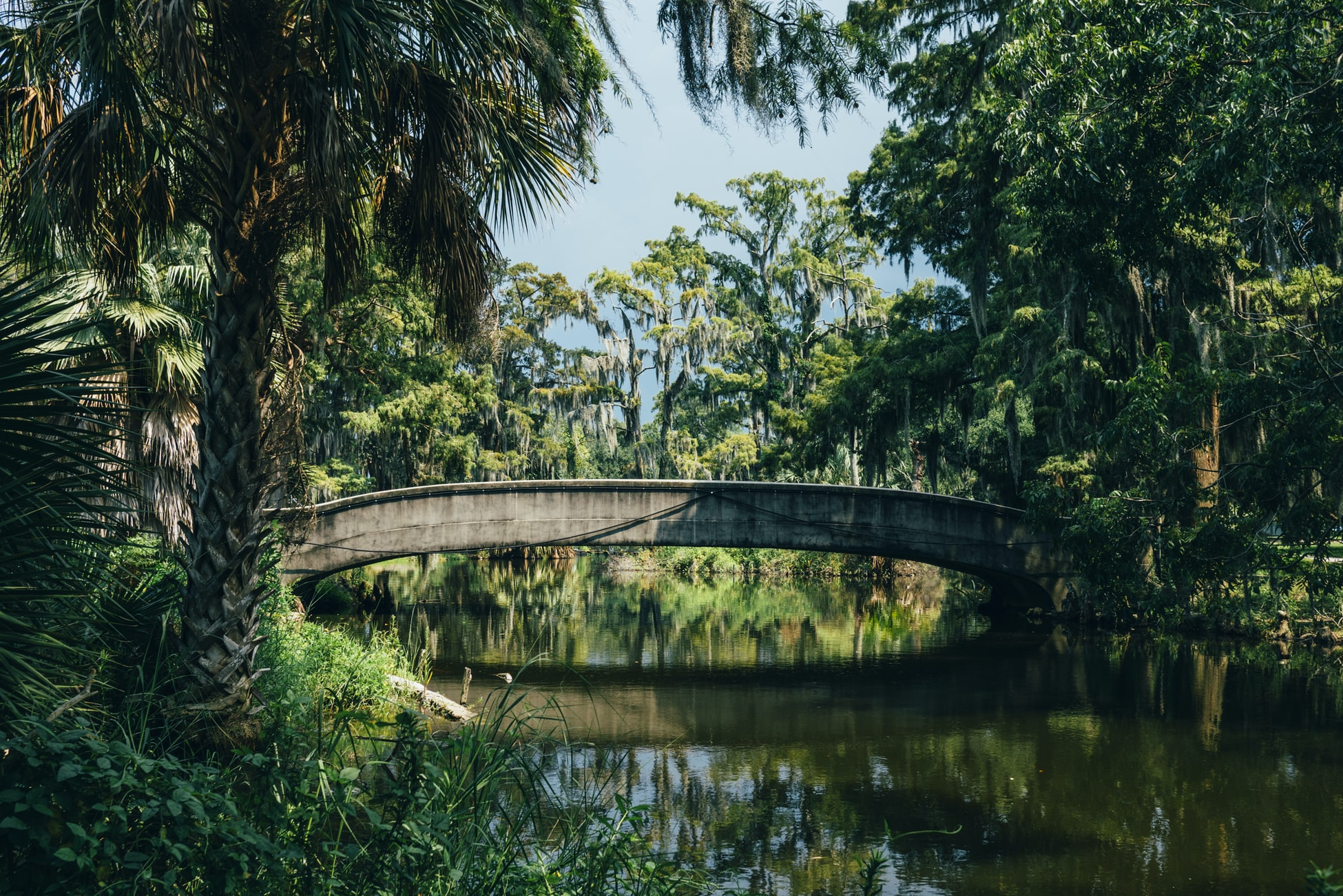 a bridge in city park in New Orleans