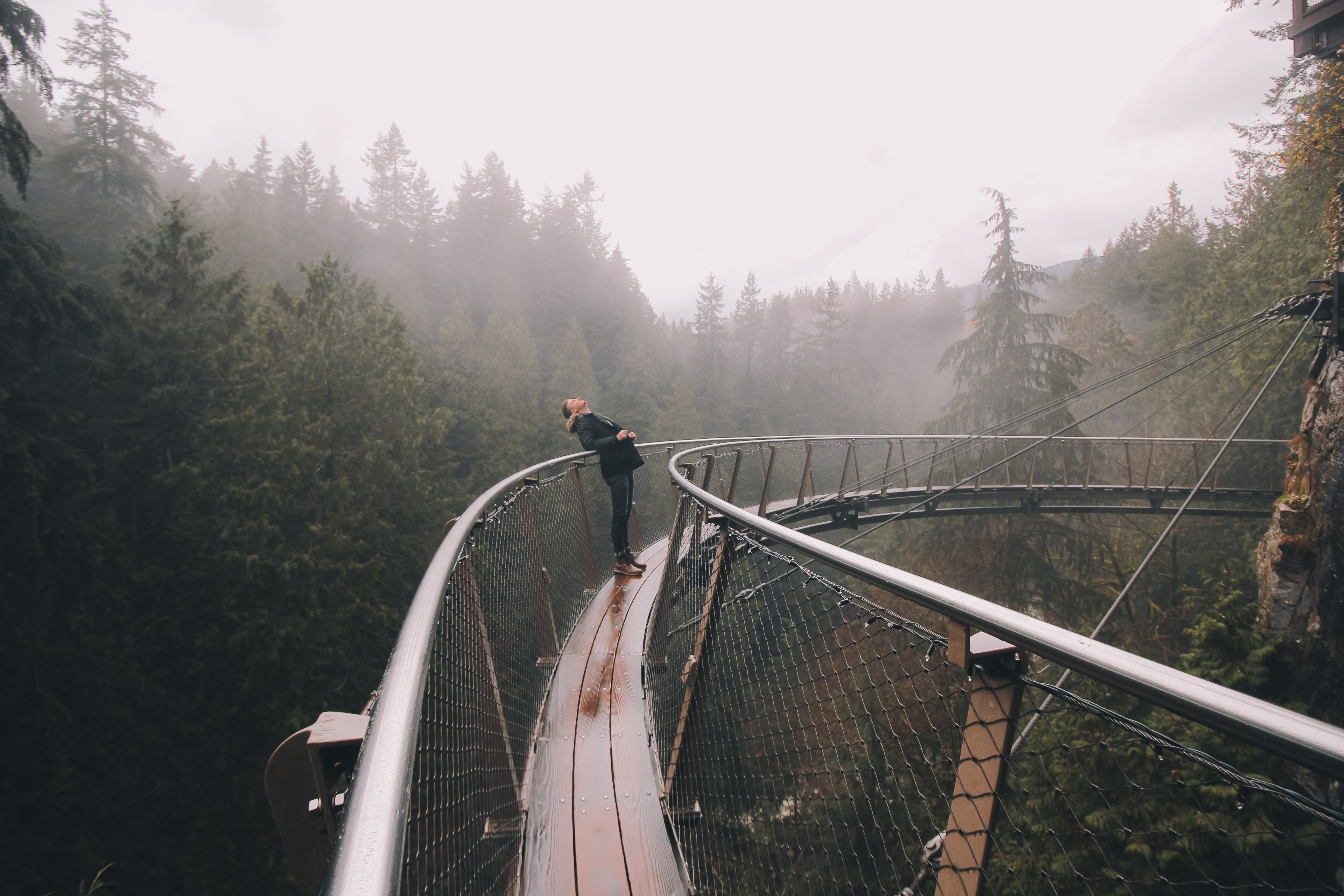 person leaning on bridge beside forest