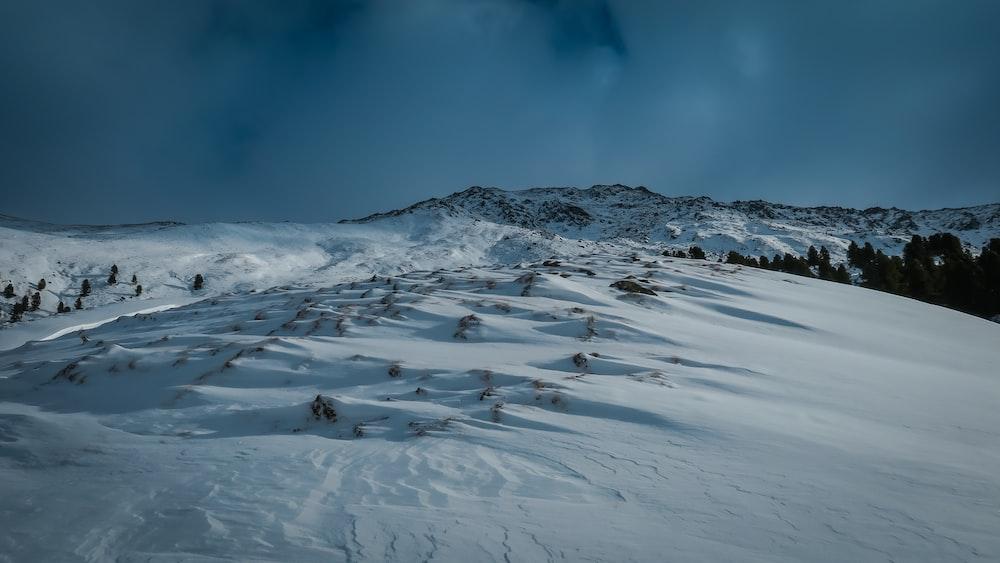 snow ground under white sky