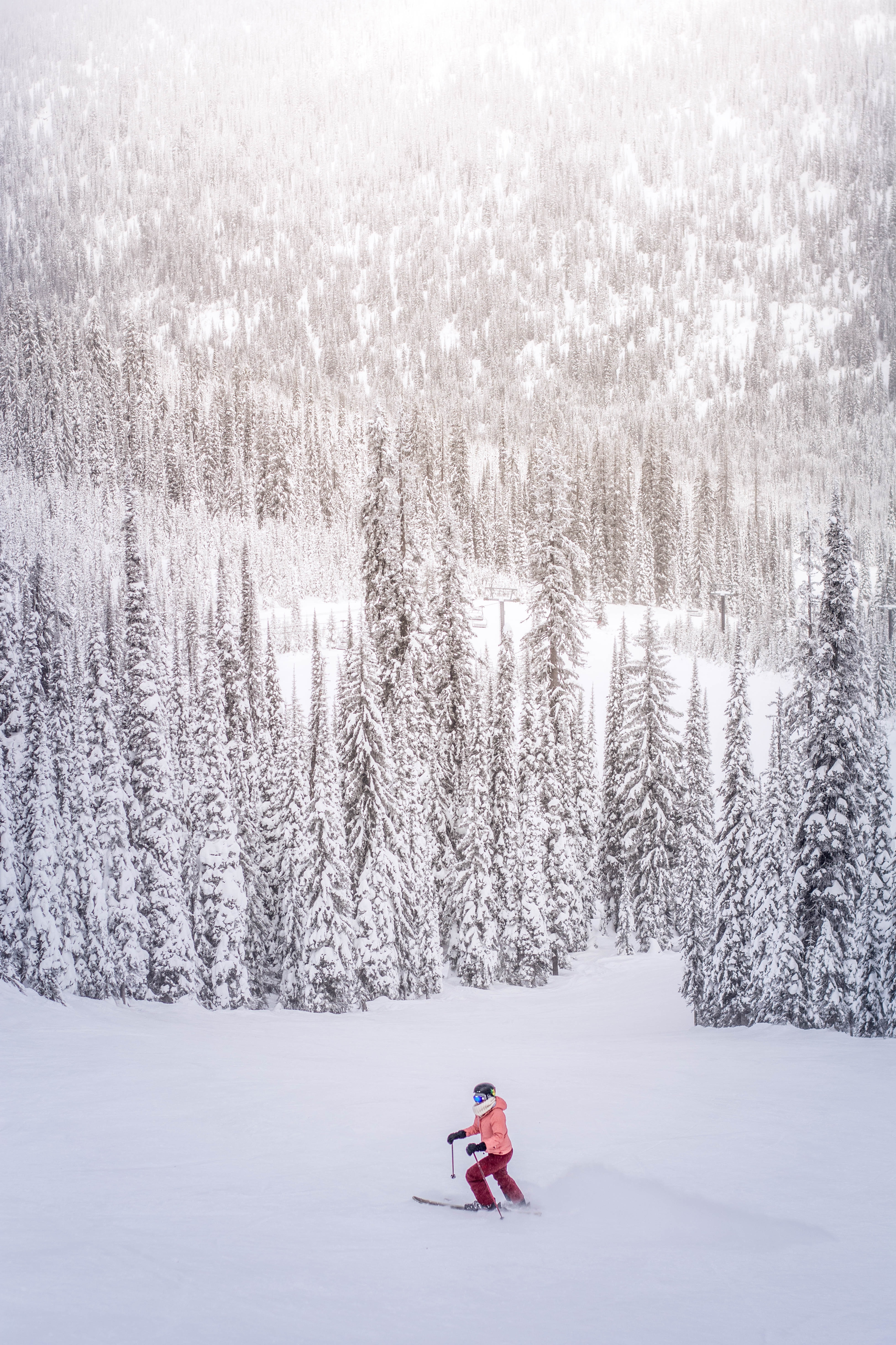 A person walking with skis in the open on a ski hill near heavily treed winter forests