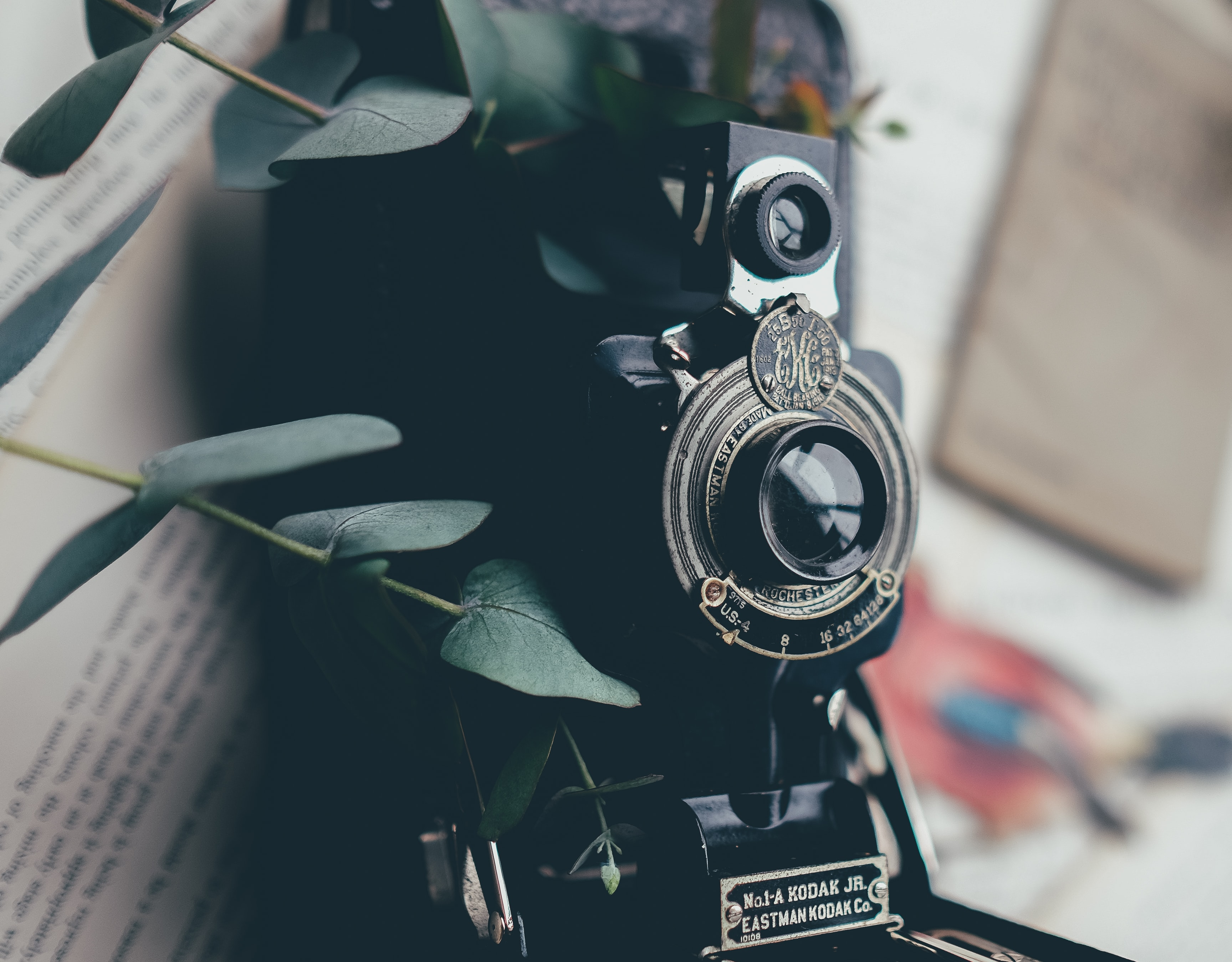 A vintage Kodak camera surrounded by leaves resting on a book