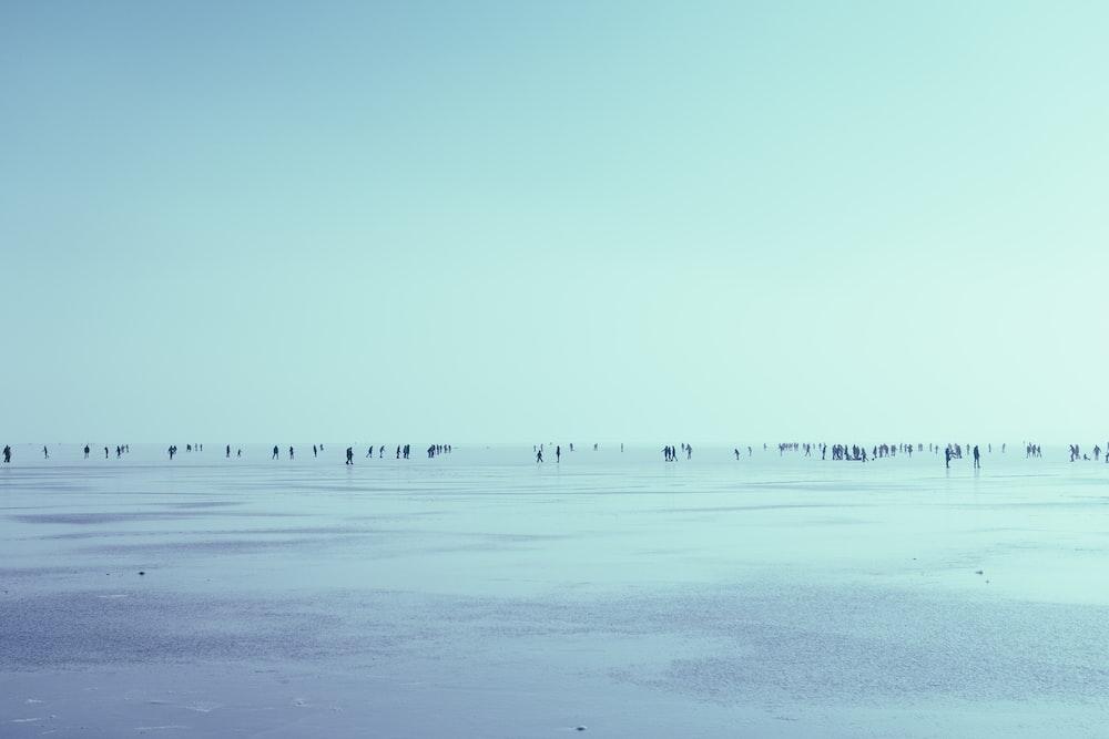 people walking in seashore over the horizon during daytime