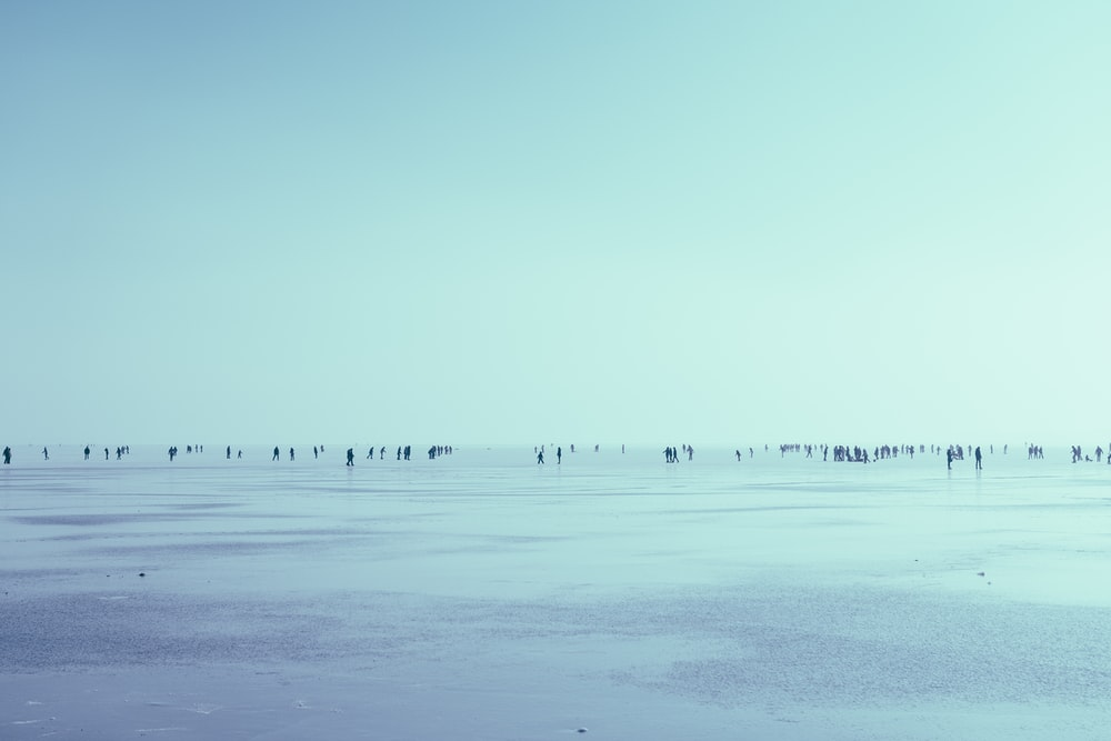 people walking in seashore over the horizon during daytime