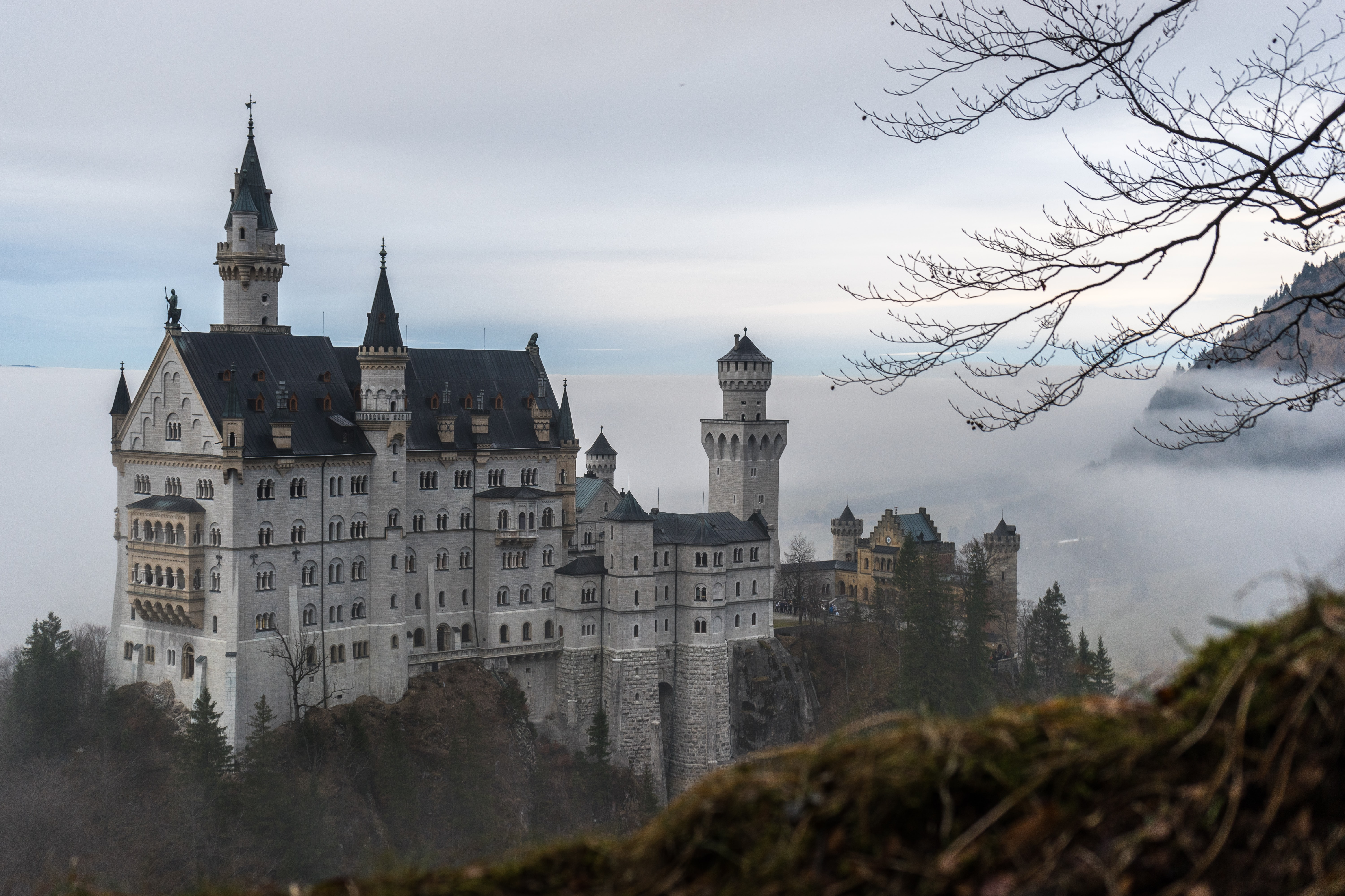 Orante Neuschwanstein Castle surrounded by fog and woods