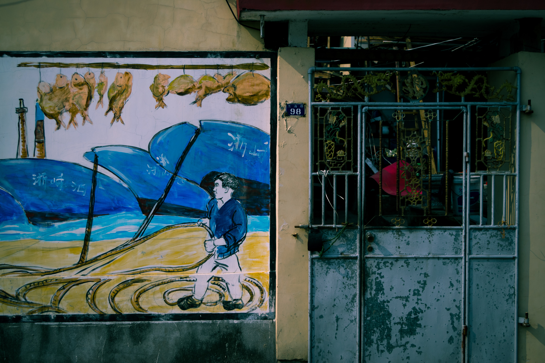 Free Unsplash photo from shen sizhe