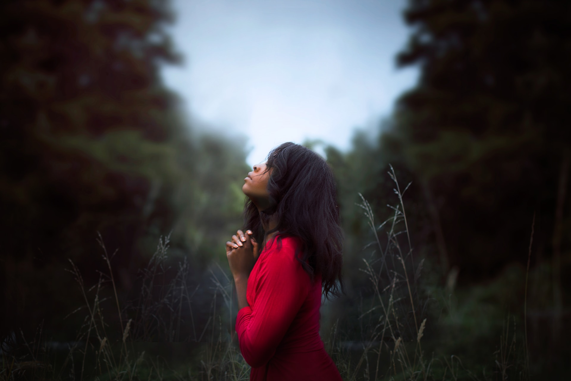 woman wearing red sweatshirt looking at top between trees near grass during daytime