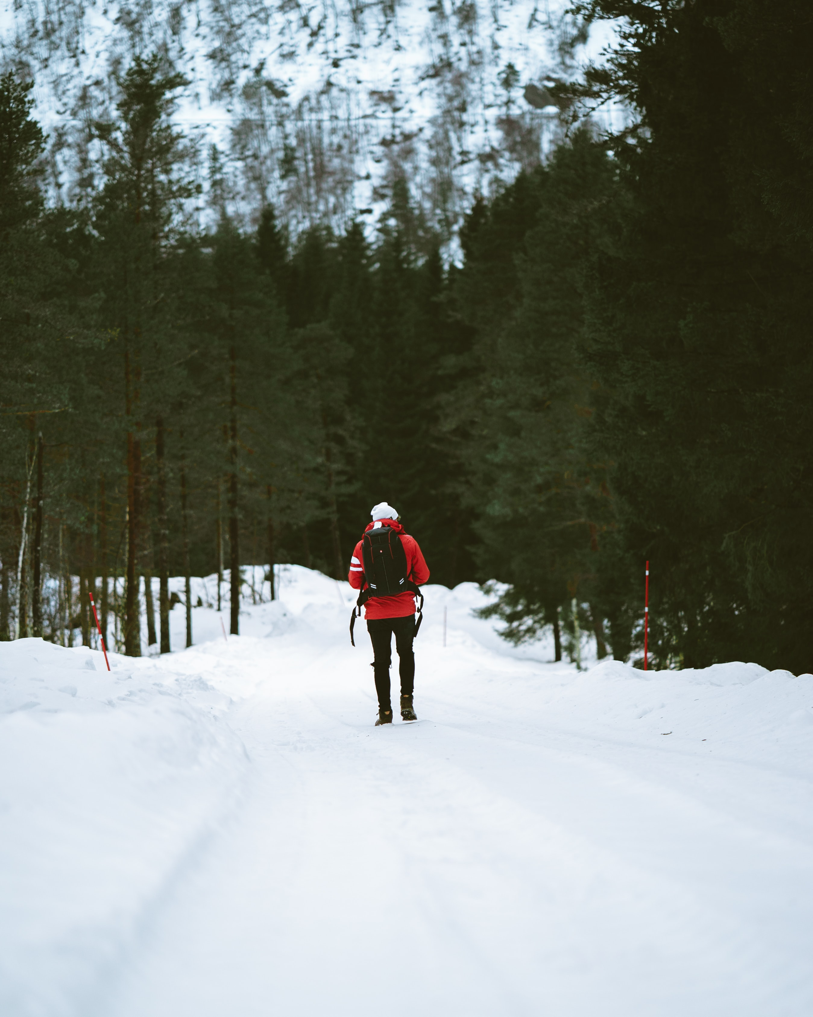A woman hiking along a forest trail in Flåm