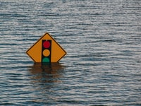 Helping Small Business Navigate Disaster