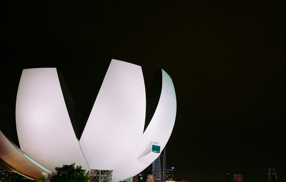 white flower form building at night