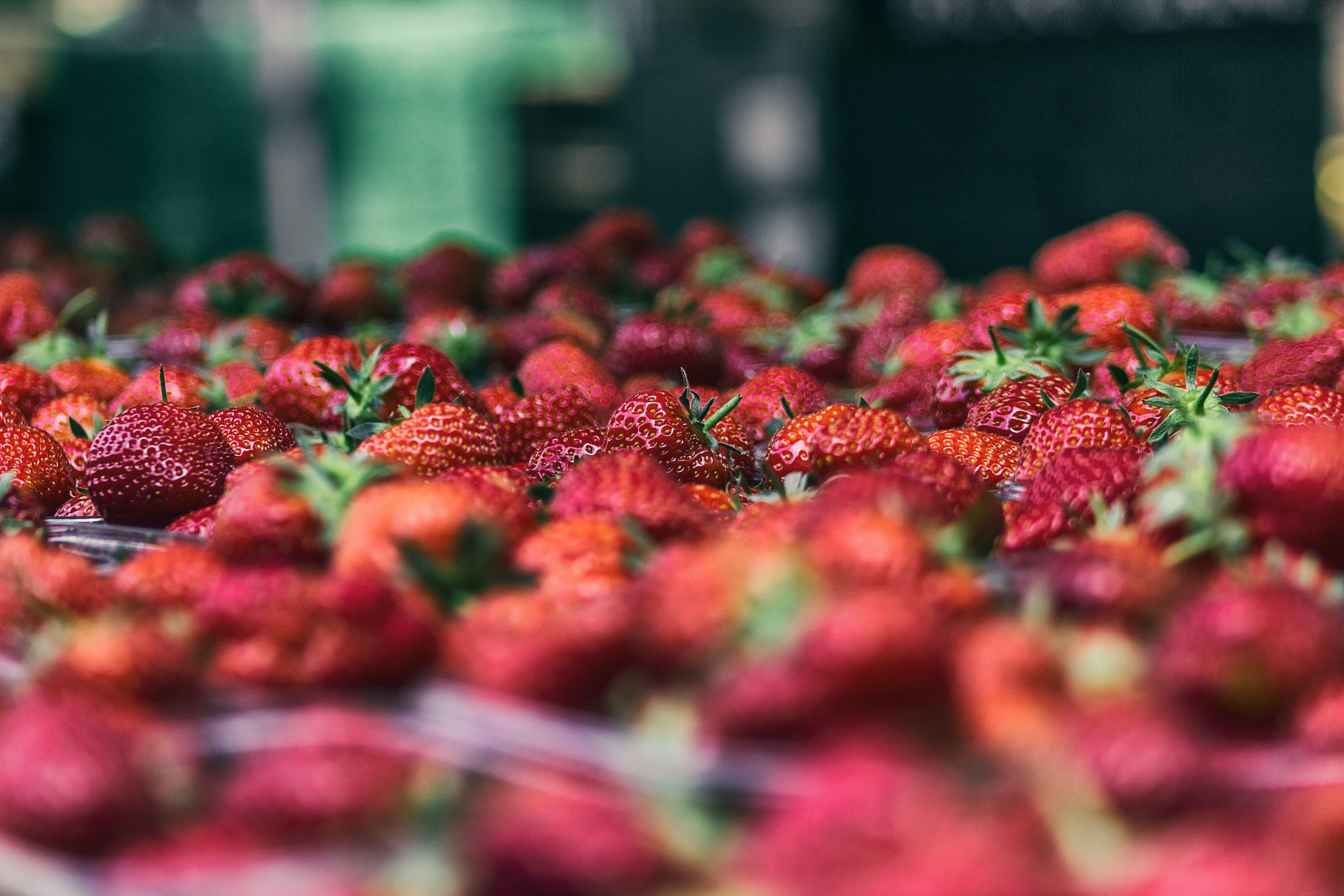 strawberry fruit lot