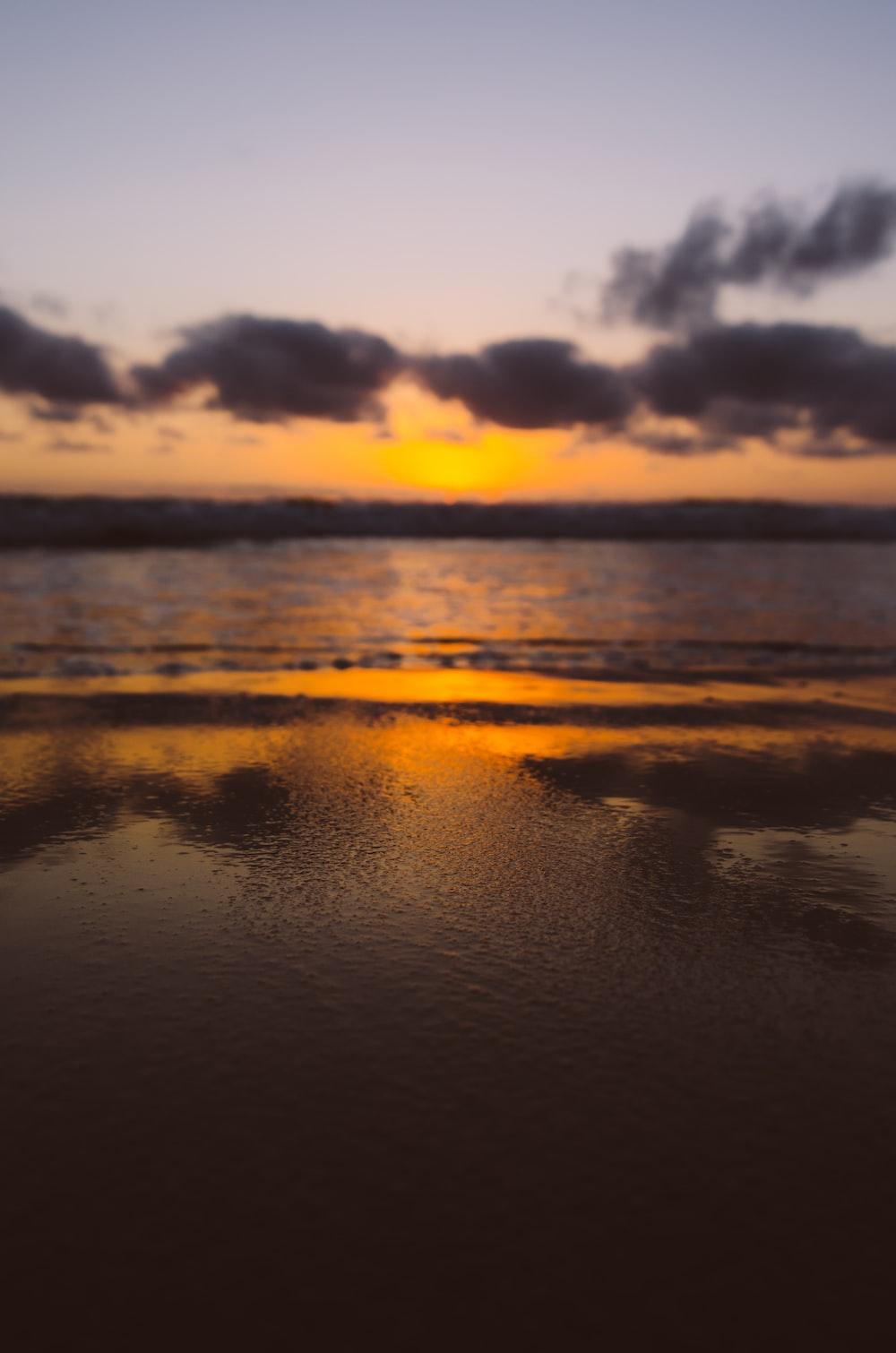 brown seashore during sunset