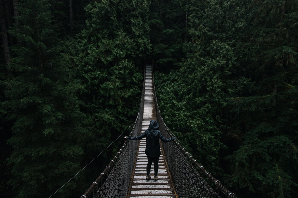 person in black hoodie on wooden bridge surrounded by green leafed trees