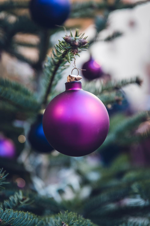 purple Christmas ball hang on Christmas tree