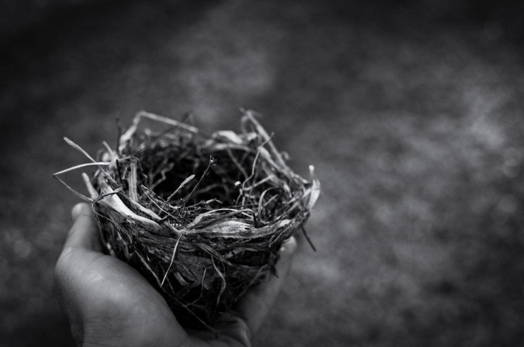 Homelab 2.1 | Nesting
