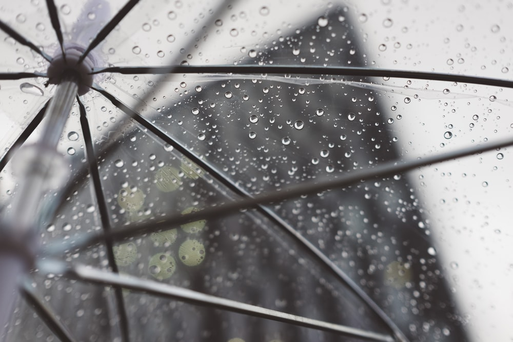 clear umbrella with water dews