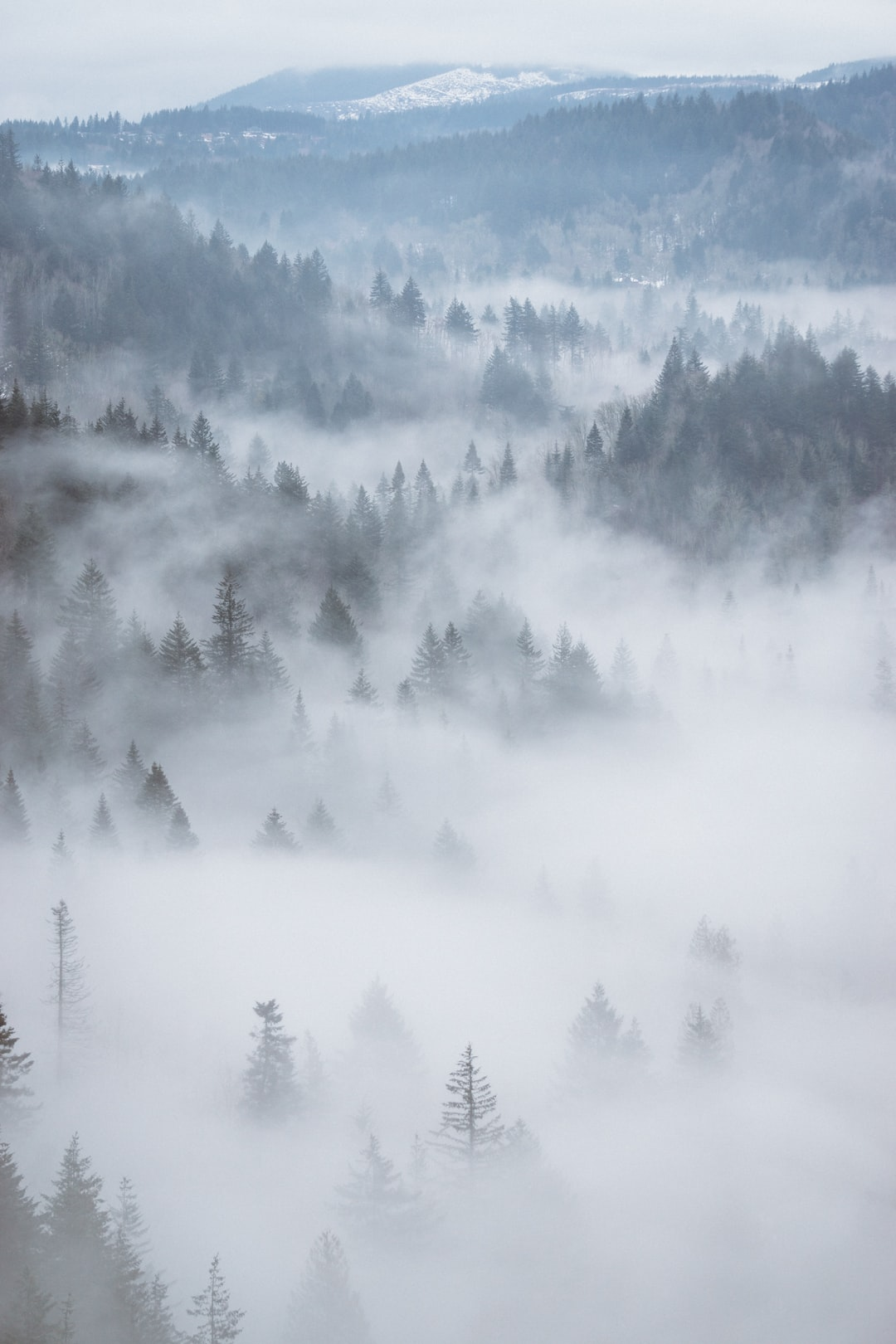 Fog covering the Columbia River Gorge, near Portland, OR.