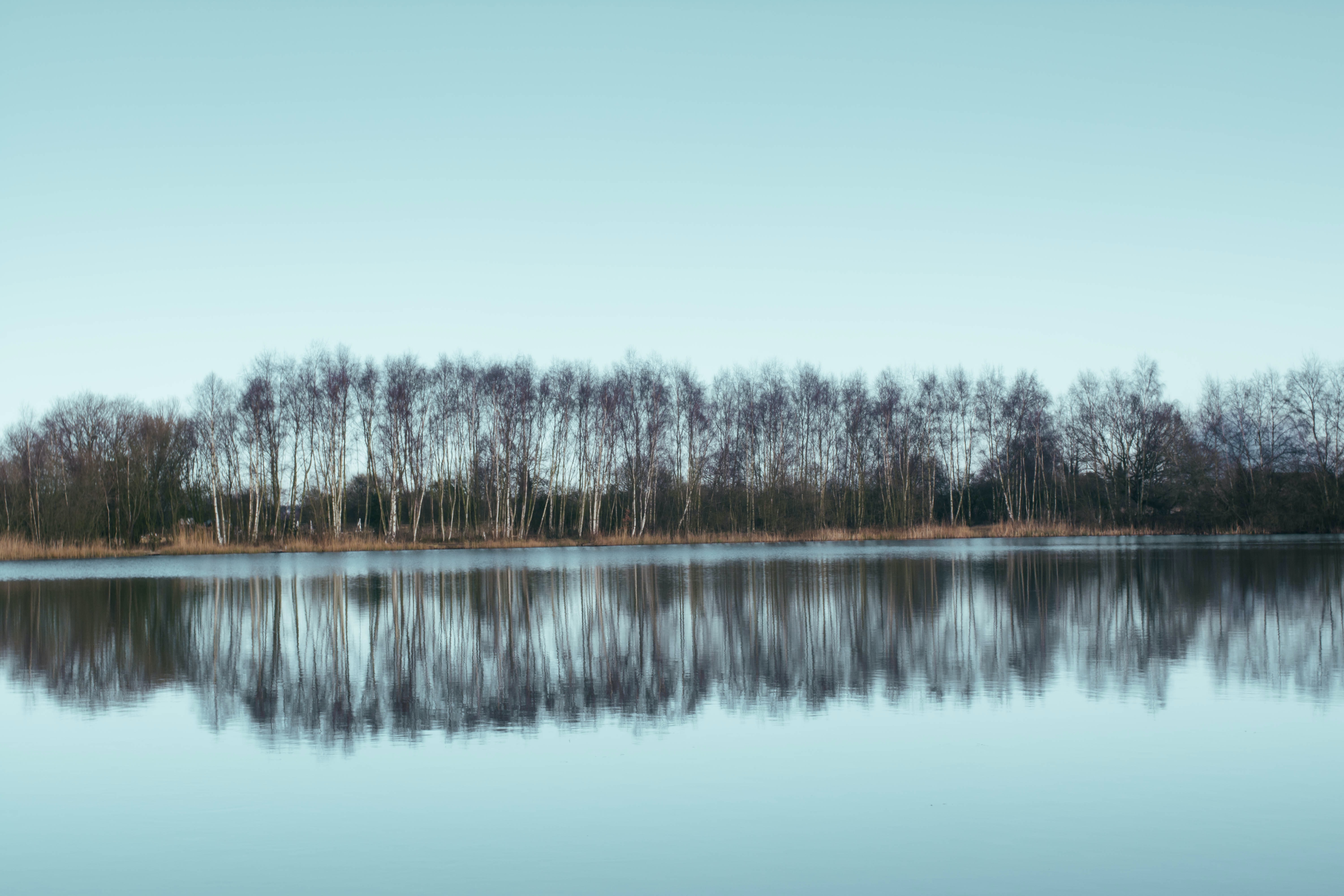 The sky and trees reflected in the lake in Scunthorpe