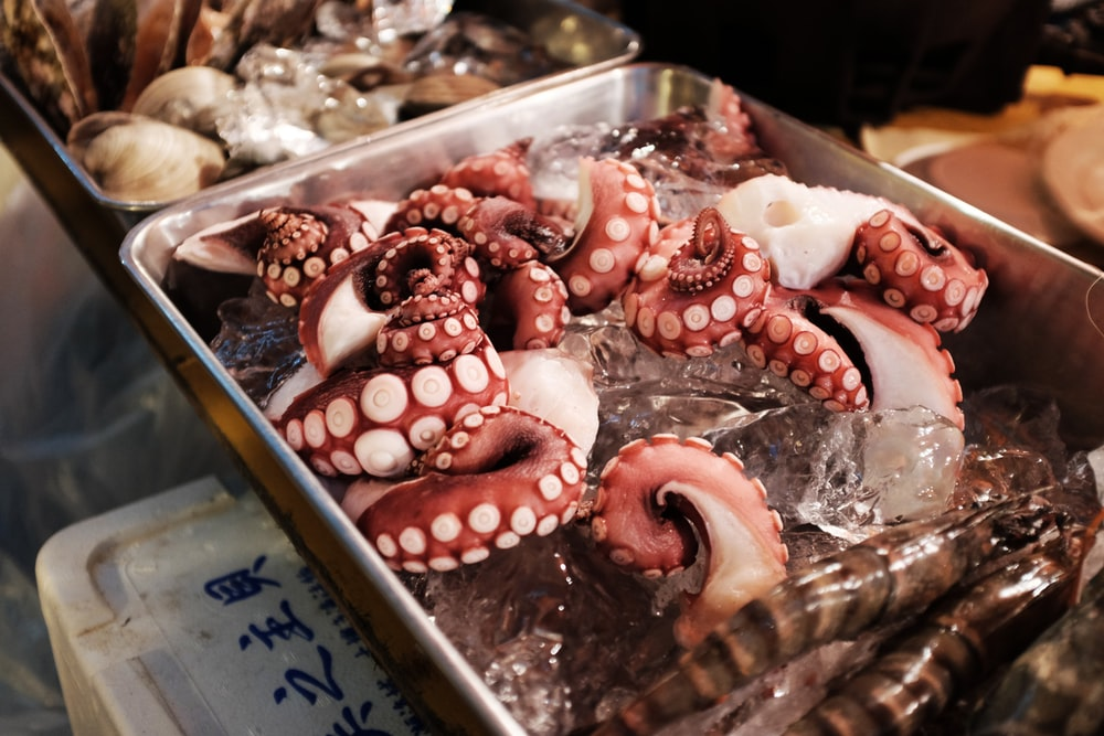octopus on gray tray