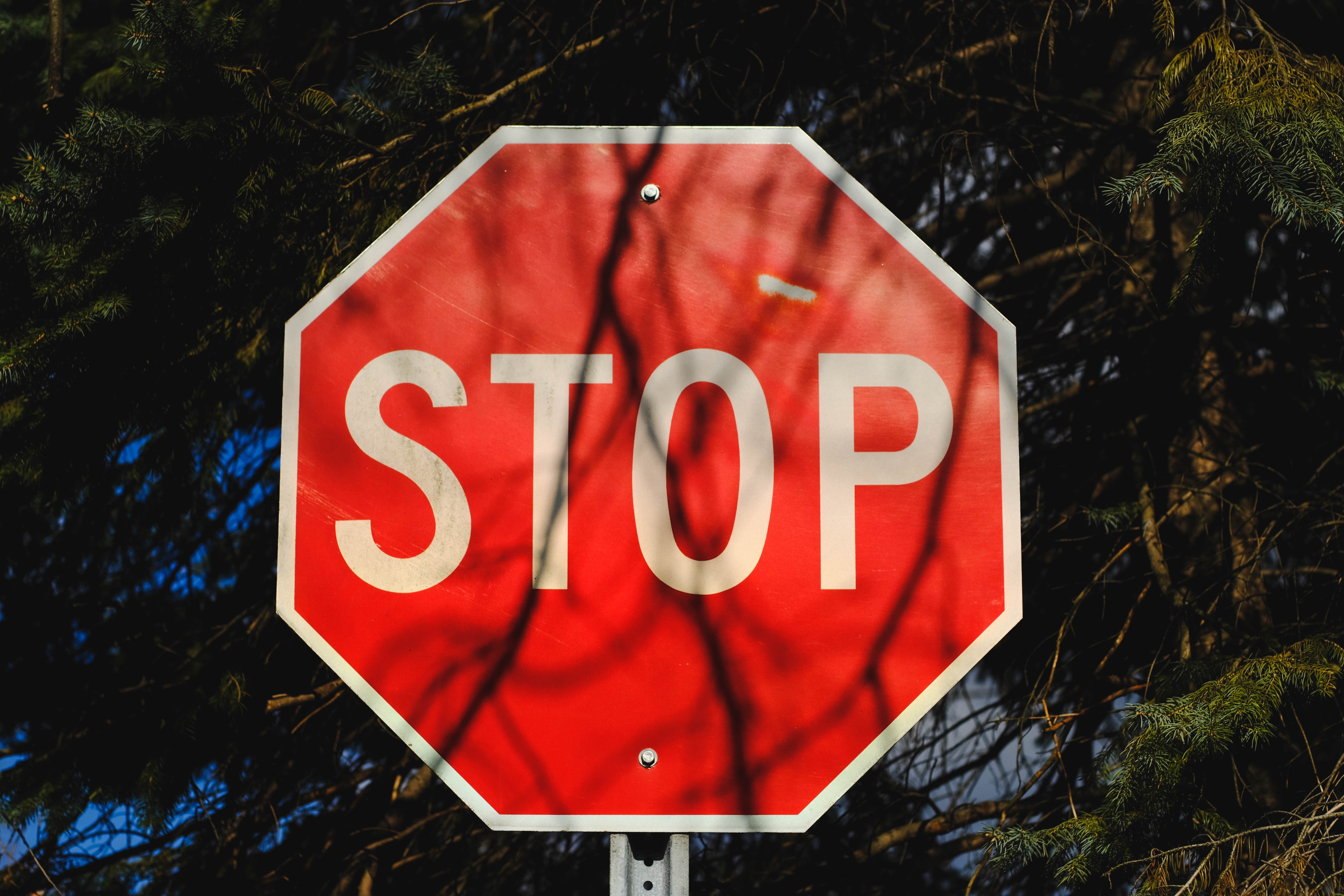 red and white stop road sign