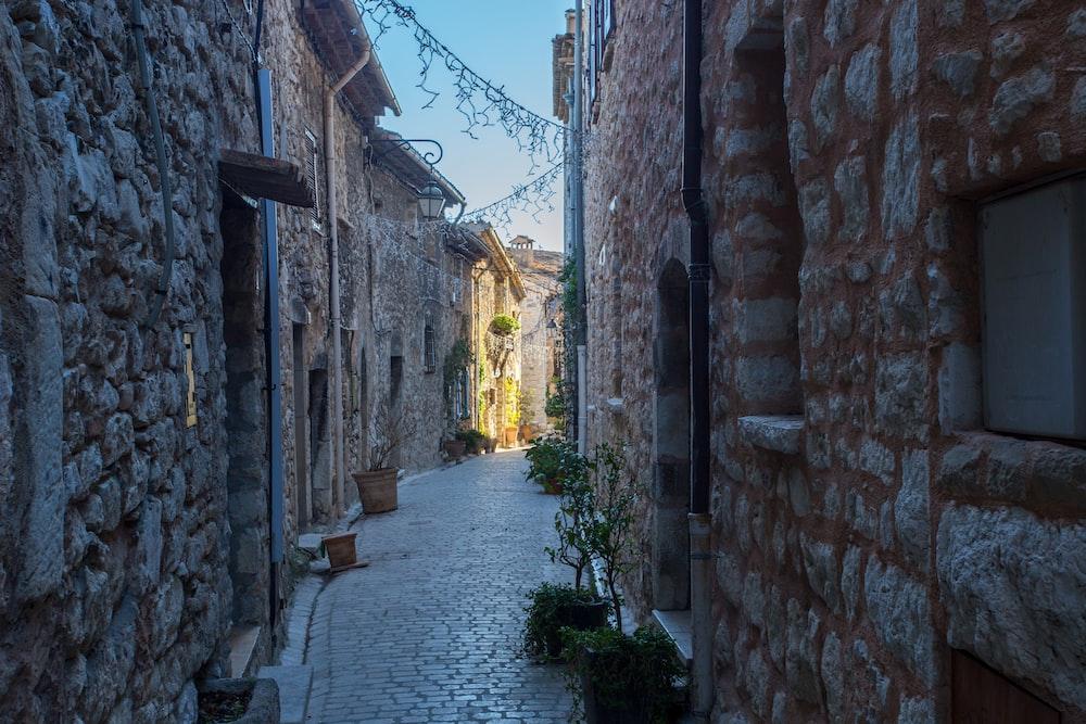 empty pathway in between of houses