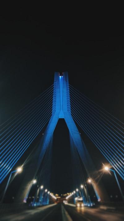 shallow focus photo of bridge