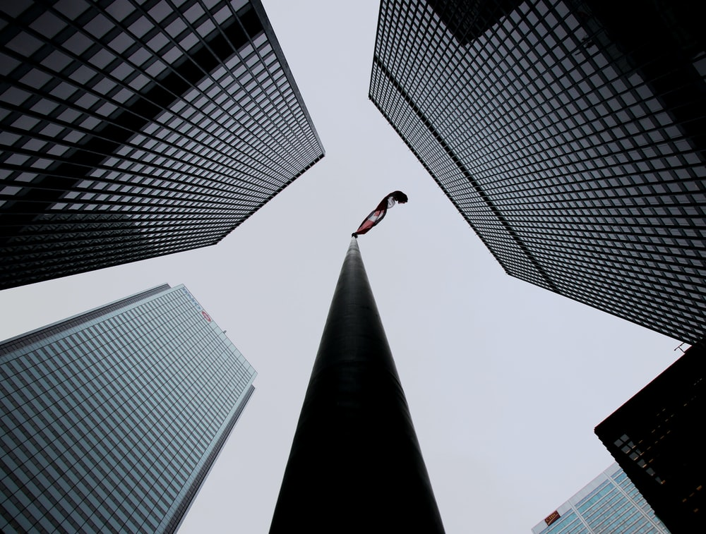 worm-view photography of high rise buildings