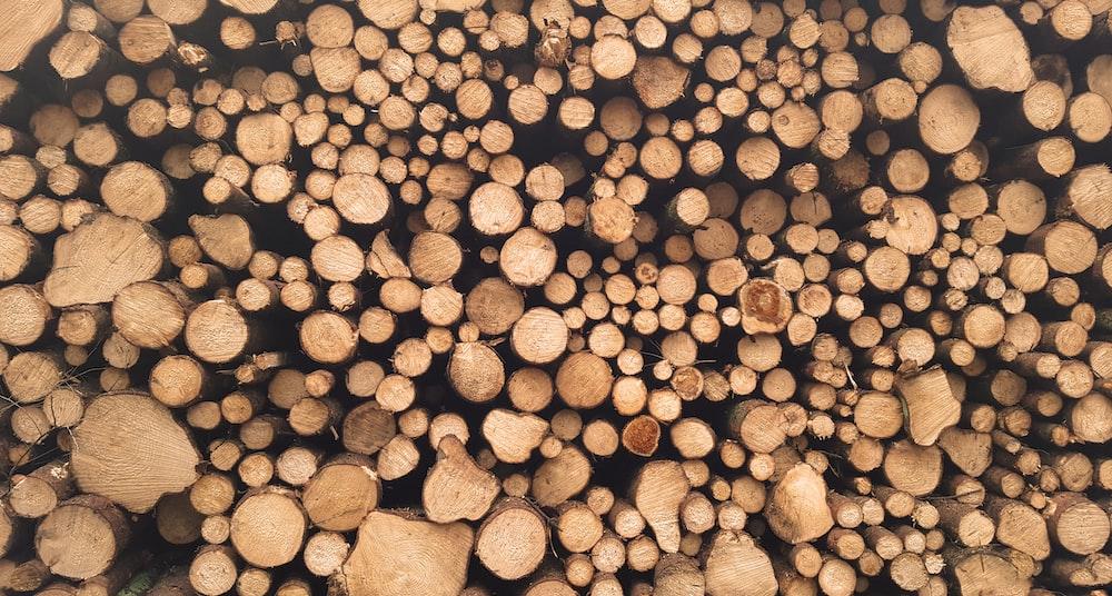 brown log lot at daytime