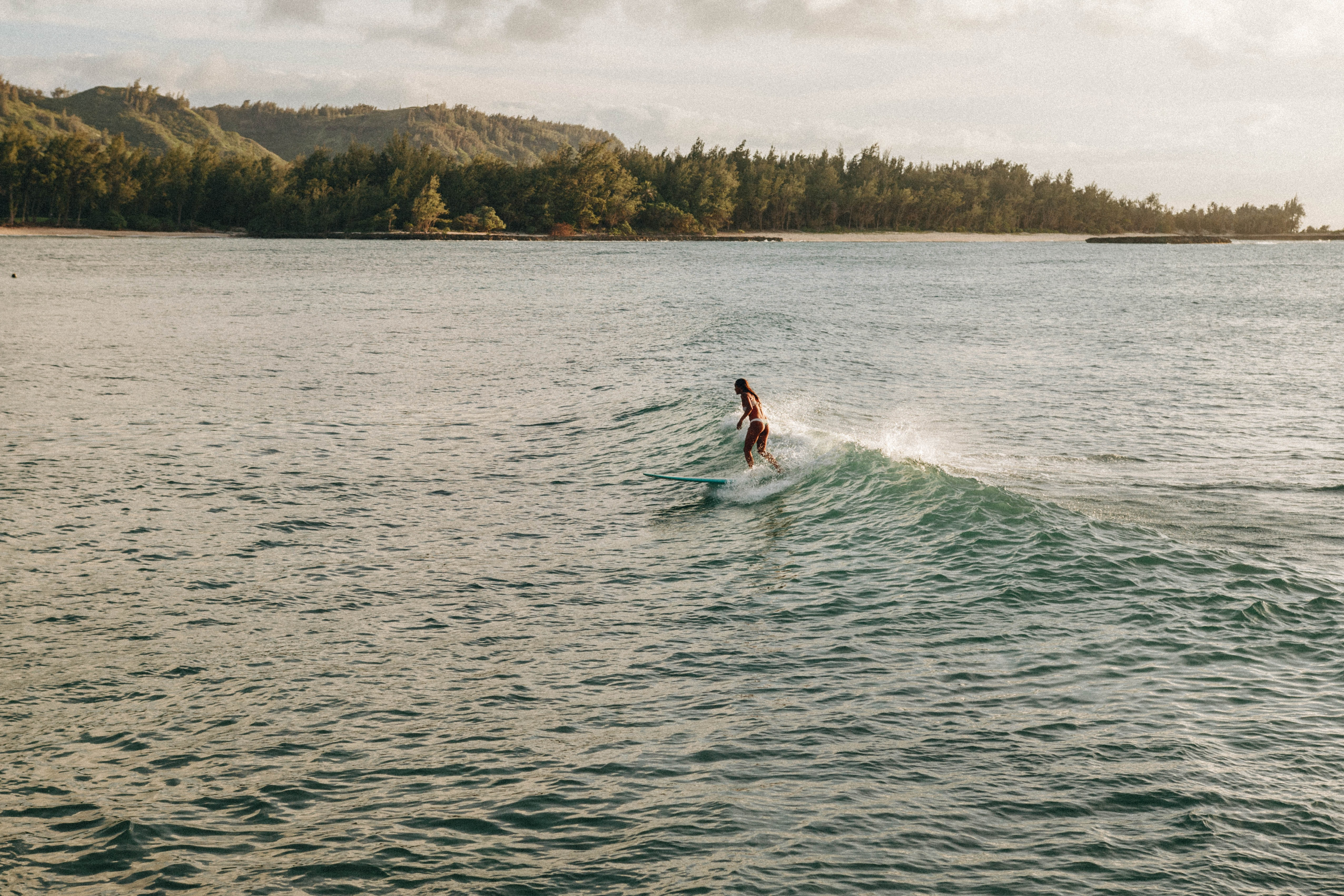 A lone surfer riding a small wave in a green ocean in Turtle Bay Resort